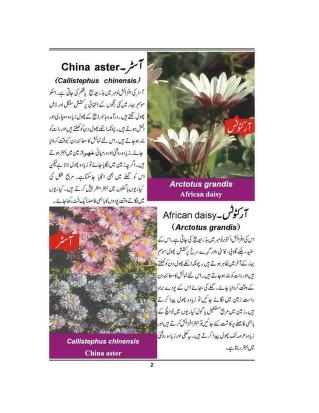 Flowers And Plants In Urdu Free Download Borrow And Streaming Internet Archive