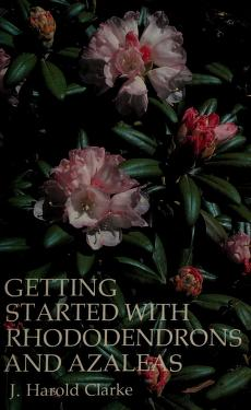 Cover of: Getting started with rhododendrons and azaleas | J. Harold Clarke